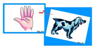 Hand Hund